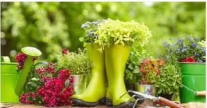 Exposition de plantes pour jardin et plantations