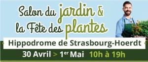 expo plantes hoerdt affiche